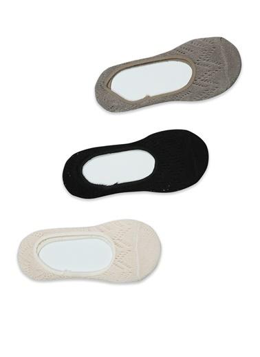 Akbeniz 3'lü Çorap Renkli